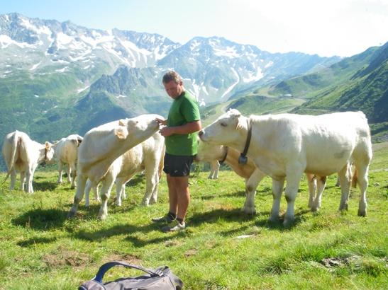 Daniel Vallat et ses vachesph. Céline Miault