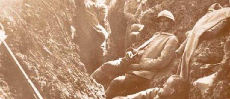Article : La Première Guerre Mondiale sur la toile